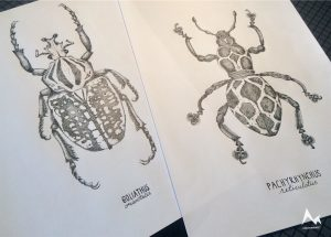 Ink Insects